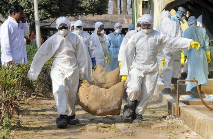 9. The Avian Influenza virus wiped out millions of birds across the state.
