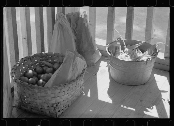 """11. """"Vegetables grown by resettled farmer, Skyline Farms, Alabama."""""""