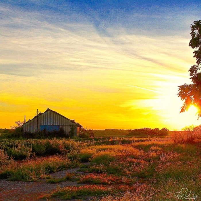 3. A beautiful scene captured in Madison County.