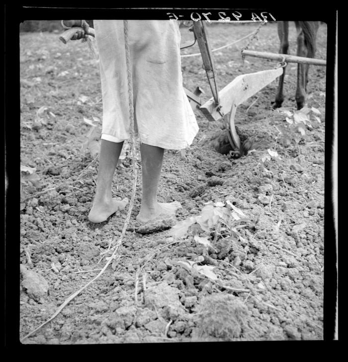 8. An Alabama plow girl, Eutaw - 1936.