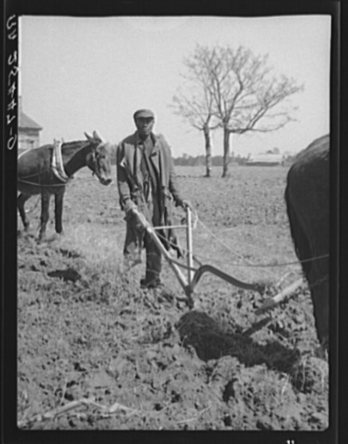 8. An Alabama sharecropper plowing a field. (Montgomery County, Alabama - 1937)
