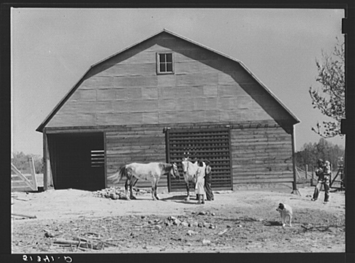 9. This repaired barn and two mares belong to George Johnson, a tenant purchase client. (Pike County, Alabama - 1939)