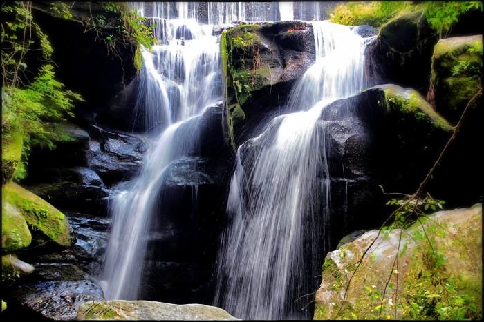 1. Dismals Canyon - Phil Campbell, Alabama