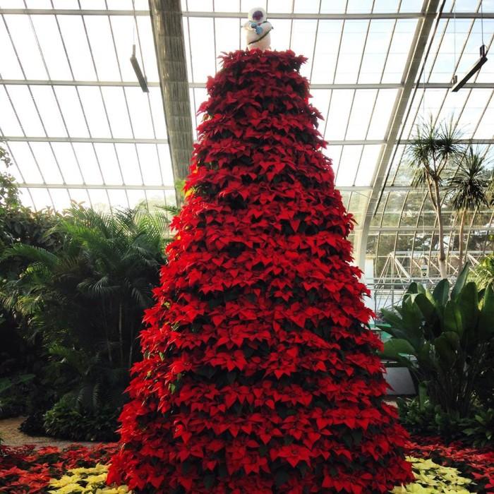 5. Visit one of Alabama's beautiful botanical gardens.