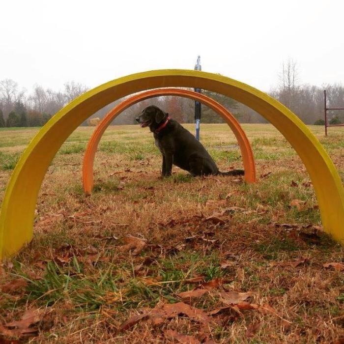 3. Beaks & Barks Winter Festival - Huntsville Botanical Garden