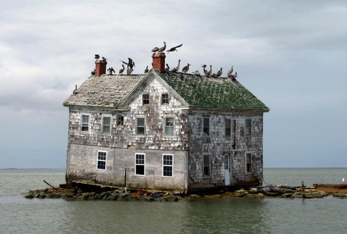 1) Holland Island, Chesapeake Bay
