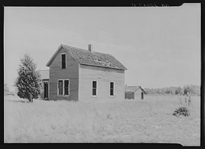 14) Abandoned farm house on the Allegan Project. Allegan, June 1937.