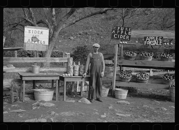 16. A mountain farmer sells apples and cider by the side of Lee Highway in Rockingham County, 1935.