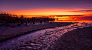 The 25 Most Jaw Dropping Photos Taken In New Jersey In 2015