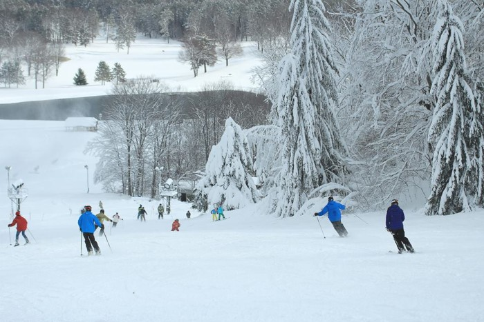 11) Boyne Ski Resorts