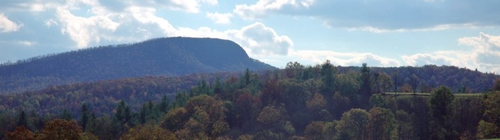 9. Uncover the natural wonders at Buffalo Mountain Natural Area Preserve.