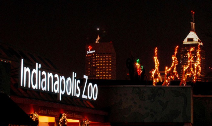 The Indianapolis Zoo is a magical place at Christmas time. The light displays are incredible!