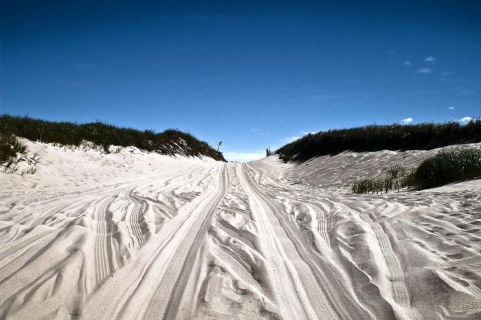 2. The Cape Cod National Seasore