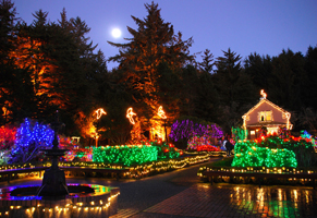 9. Shore Acres State Park Holiday Lights.