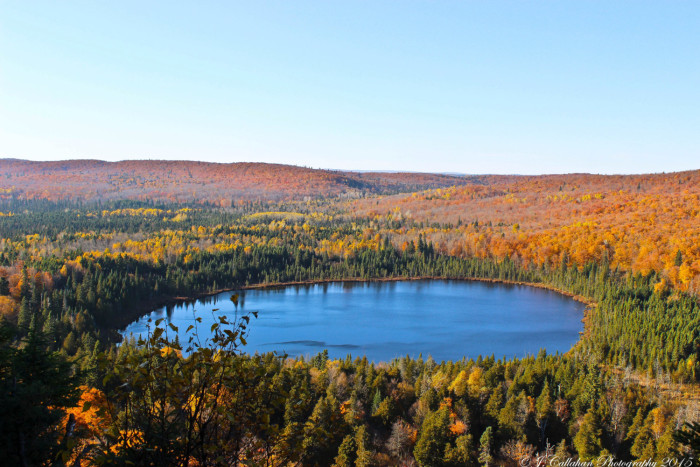 18. Jake Callahan took this amazing fall foliage shot to preserve MN's most beautiful season.