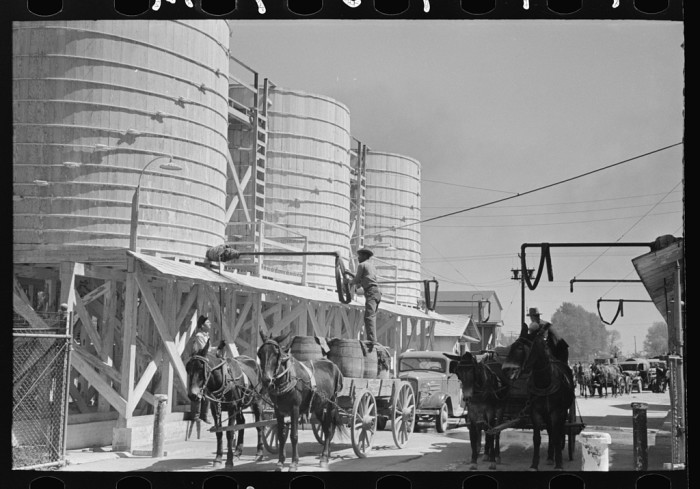 13. Farmers line up for liquid feed during the 1930s in Owensboro.