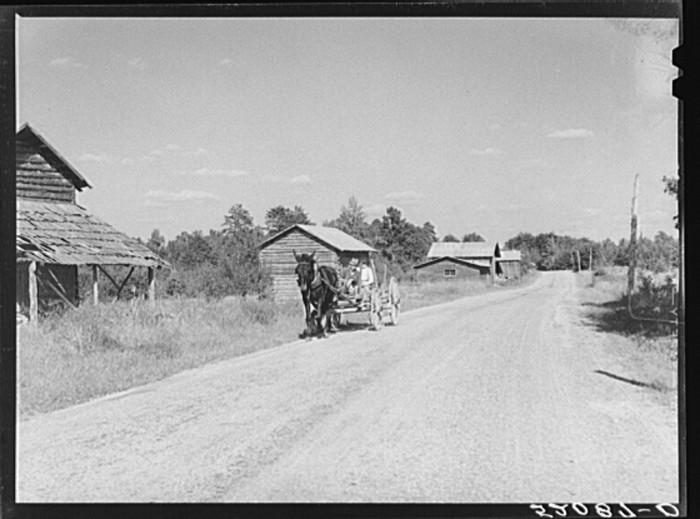 22. John D. Ferguson and his son riding in their wagon in Pittsylvania County, 1939.