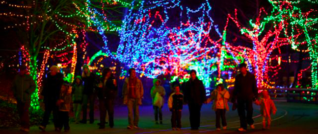 Did you know the Indianapolis Zoo was actually the first zoo to do a Christmas light show?