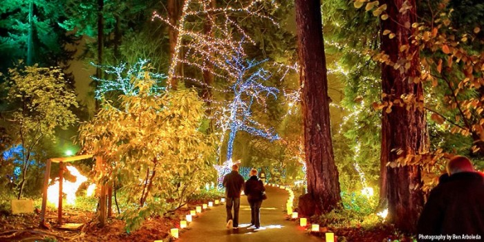 6. Christmas Festival of Lights in The Grotto.