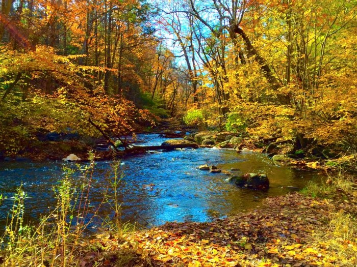 7. A lovely shot of Hacklebarney State Park, taken by Gail Poyssick.