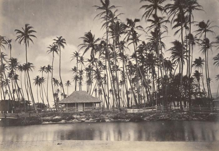 17 Rare Photos From Hawaii