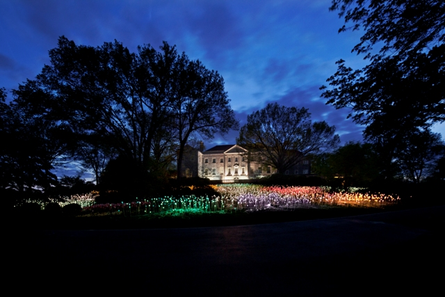 1) Holiday Lights at Cheekwood