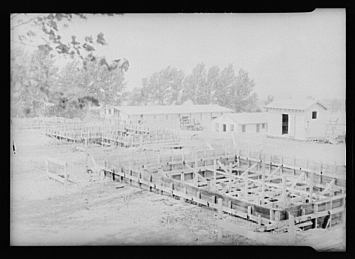 6) Homes under construction as part of a Resettlement Administration project in Ironwood, Aug 1936.