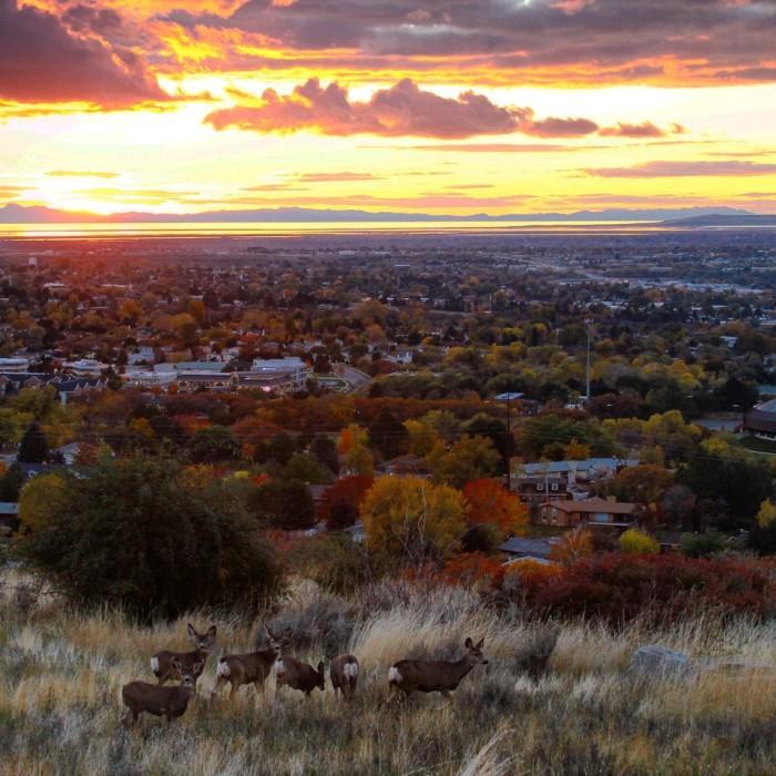 25. Ogden sunset, by Heidi Alsup