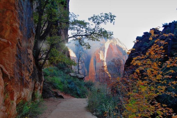 7. Zion National Park, by Heidi Alsup