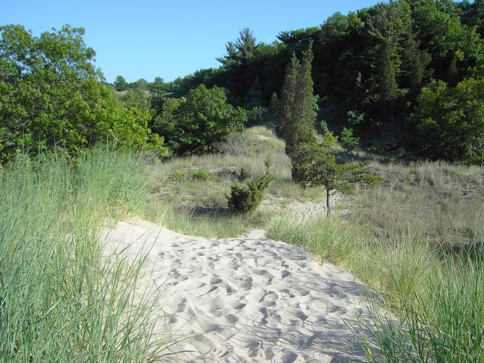 16. Enjoy the beach at the Indiana Dunes State Park