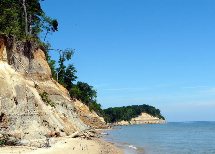 4) Calvert Cliffs