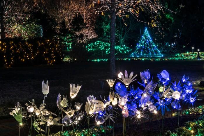 2. Lewis Ginter Botanical Gardens Dominion Festival of Lights, Richmond
