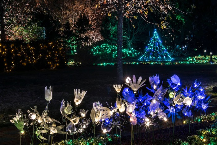 6. Dominion Festival of Lights at Lewis Ginter Botanical Gardens, Richmond