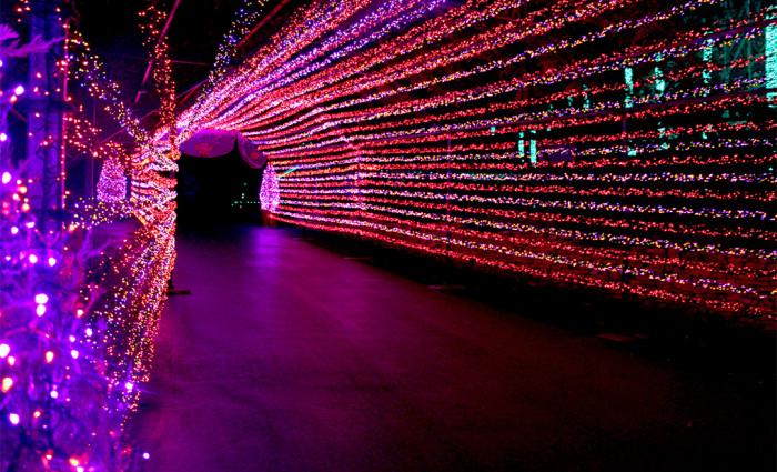 Light-Tunnel-2