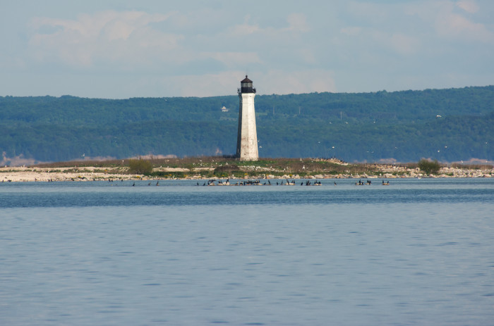 6) Lighthouse auction.