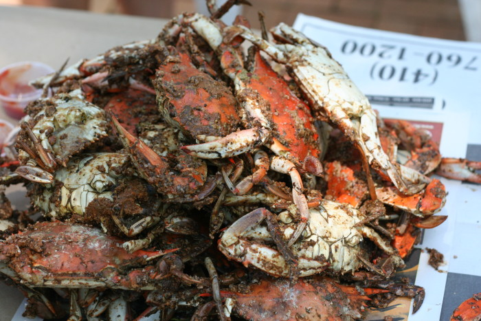 1) Maryland Blue Crabs