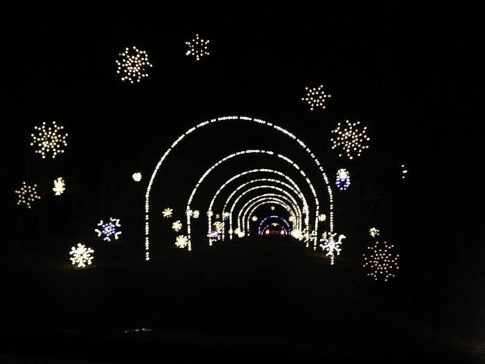 5) Winter Lights Festival, Gaithersburg
