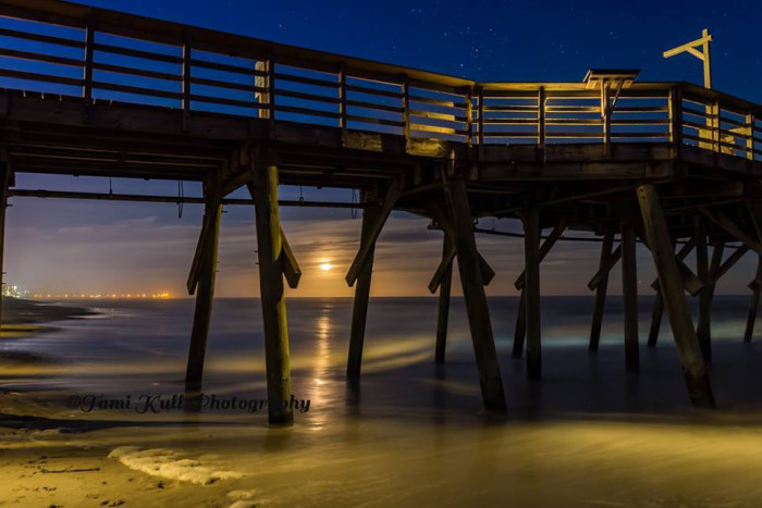 3. Myrtle Beach State Park. Photo by Tami Kull Photography.
