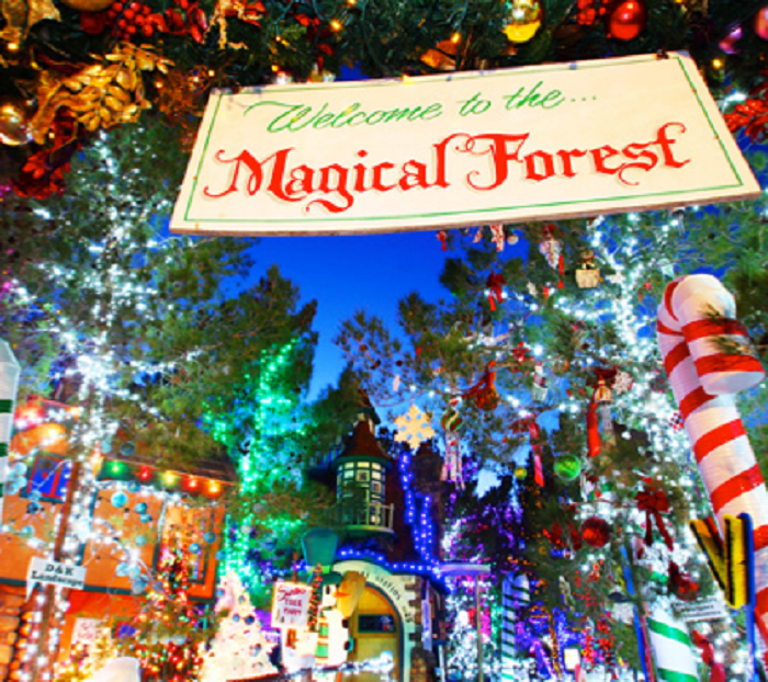 10. The Magical Forest - Las Vegas