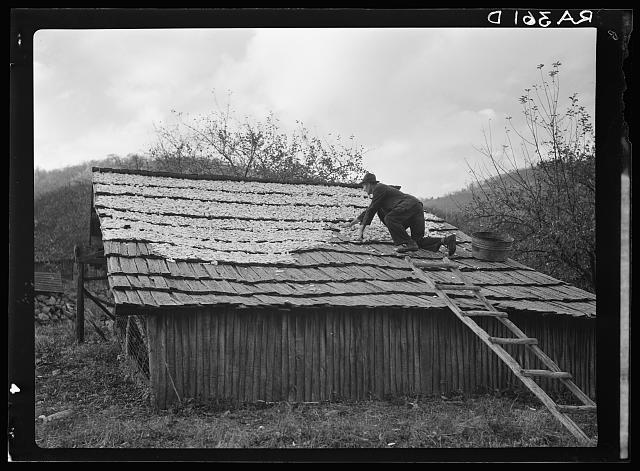 12. A mountain farmer lays apples out to dry on the roof of his cabin in Nicholson Hollow near Old Rag Mountain in Madison County, 1935.
