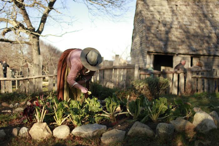 8. Plimoth Plantation