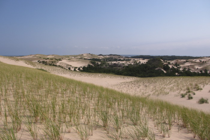 14. Provincetown Dunes
