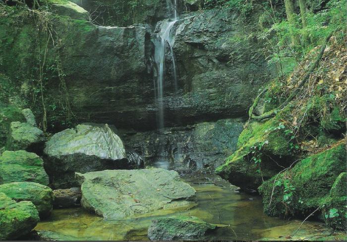 7. Sicily Island Hills Wildlife Management Area, Catahoula Parish, LA
