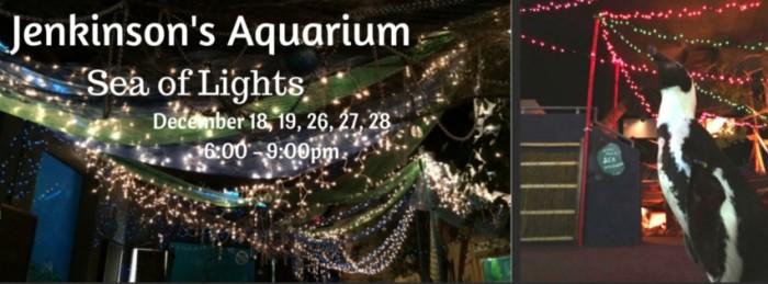 8. Sea of Lights at Jenkinson's Aquarium, Point Pleasant Beach
