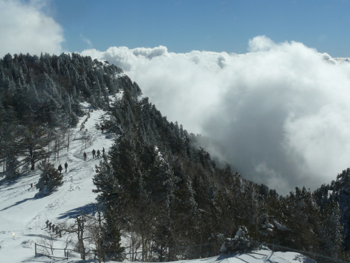 7. Snow and clouds meet on a New Mexican mountainside.