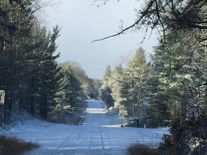 4) Snowmobiling in Cadillac