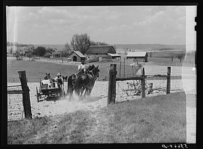 22. Spring planting in Rockingham County, 1940.