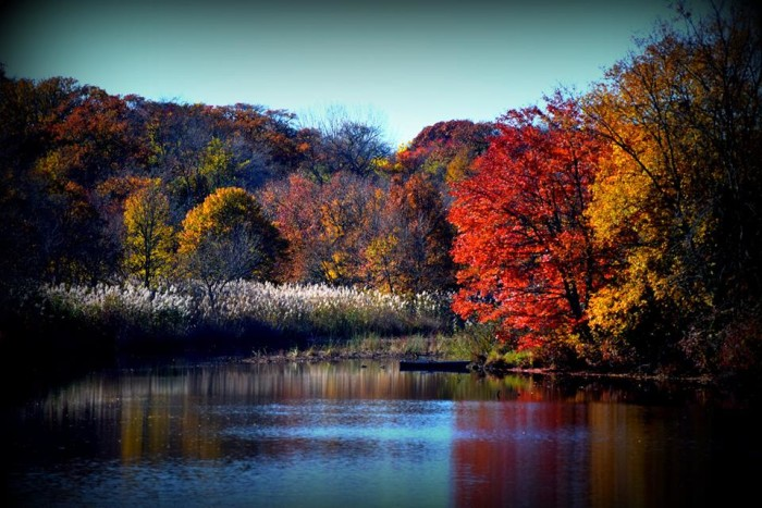 23. Fall in Spring Lake Heights. Taken at Wreck Pond by Carole Langworthy Reed.