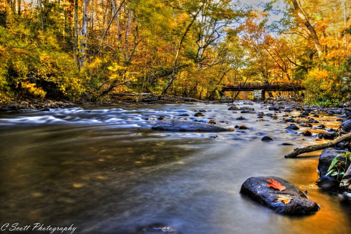 13. A babbling brook in Stephens State Park, taken by Casey Scott.