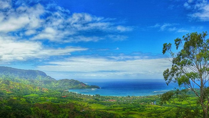 16) This photo, taken from Okolehao Trail, overlooks the jaw dropping Hanalei Bay.